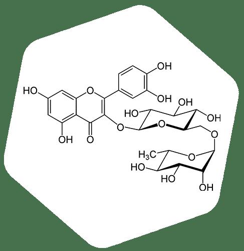 Représentation d'une molécule de rutine, ou rutoside
